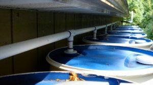 Le processus de traitement de l'eau