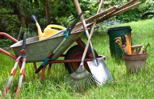 les outils les plus utiles au jardin